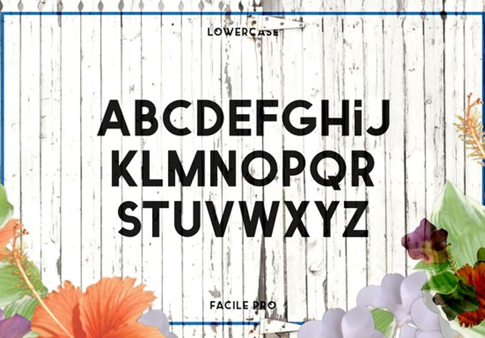 facile3 Best sellers Fonts And Graphics