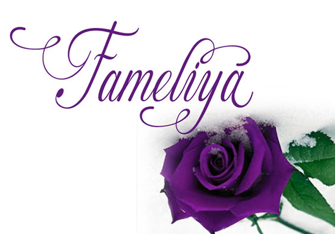 famelia3 Best sellers Fonts And Graphics